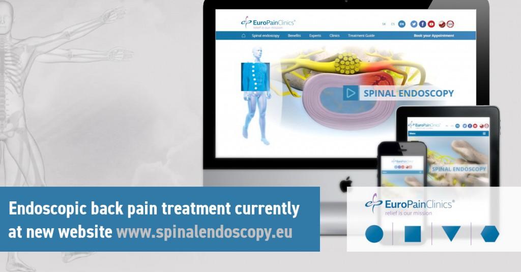 spinalendoscopy-en